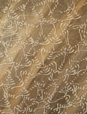 Kufic