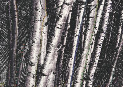 Trees - Colab
